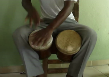 Bongocero gevraagd